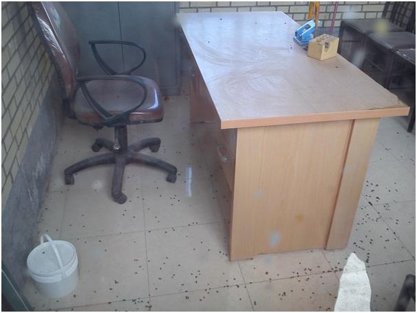 این هم اتاق کنفرانس و مهمانان ویژه ورزشگاه میباشد. نقطههای سیاهی که در عکس روی زمین مشاهده می کنید مگسهای مرده است که در اتاق زندانی شده و از سرما و گرسنگی مردهاند.