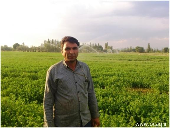 کشاورزی مکانیزه در چهاربرج - زین العابدین حیدری