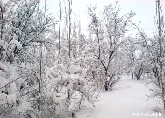 عکسهای طبیعت چهاربرج